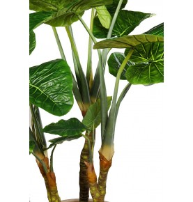 PLANTA COLOCASIA TARO ARTIFICIAL 235 CM