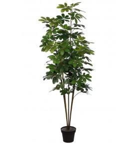 PLANTA CHEFLERA ARTIFICIAL 180CM (X5)
