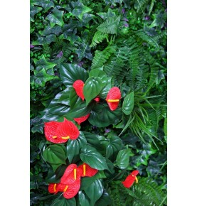 PLACA JARDIN VERTICAL ANTHURIUM 1m2
