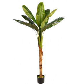 PLATANERA TROPIC ARTIFICIAL 150 CM